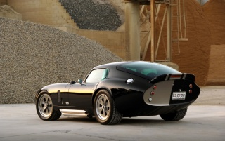 Random: Daytona cobra rear