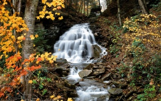 Autumn waterfall wallpapers and stock photos