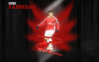 Random: Fabregas Wallpaper