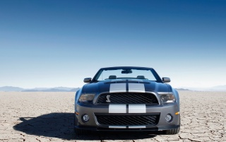 Previous: Ford Shelby GT500 Front