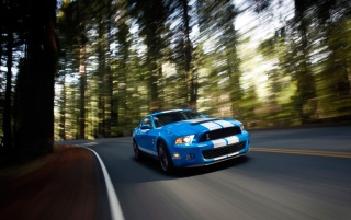 Ford Shelby GT500 Speed wallpapers and stock photos