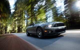 Random: Ford Shelby GT500 Speed 2