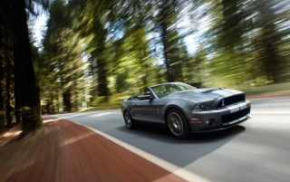 Ford Shelby GT500 Speed 3 wallpapers and stock photos