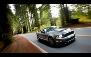 Ford Shelby GT500 Speed 4 wallpapers and stock photos