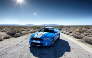 Ford Shelby GT500 Front 5 wallpapers and stock photos