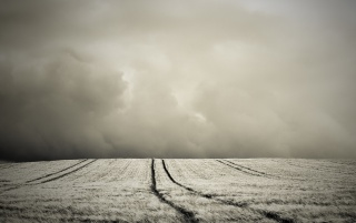Dark Field by ~ wallpapers and stock photos