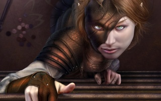 Fantasy girl - Cat burgler wallpapers and stock photos