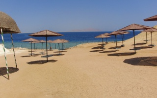Random: the Red Sea Beach