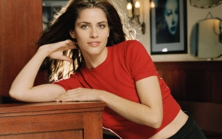 Amanda Peet Red Shirt 4 wallpapers and stock photos