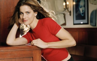 Random: Amanda Peet Red Shirt 5