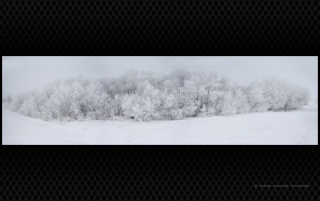 Winter-panoramic wallpapers and stock photos