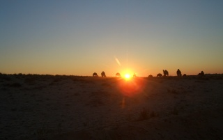 Random: Sunset in the desert