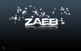 zaeb spring wallpapers and stock photos