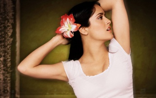 Salma Orquídea wallpapers and stock photos