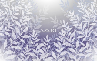Vaio White wallpapers and stock photos