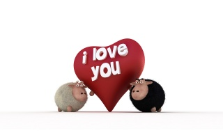 Sheeps - I Love You wallpapers and stock photos