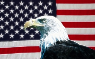 American eagle wallpapers and stock photos