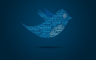 Typo twitter bird wallpapers and stock photos