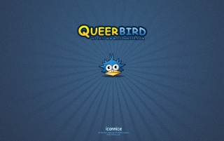 queer bird wallpapers and stock photos