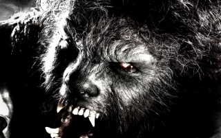 die Wolfman wallpapers and stock photos
