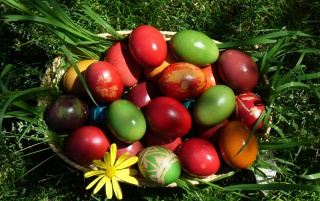 Easter eggs in a basket wallpapers and stock photos