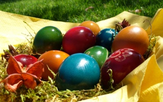 Decorating easter eggs wallpapers and stock photos