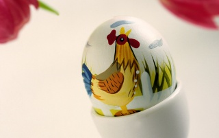 Easter chicken egg wallpapers and stock photos