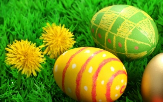 Two flowers and three easter eggs wallpapers and stock photos