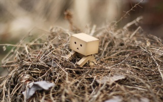 Danbo de marzo wallpapers and stock photos