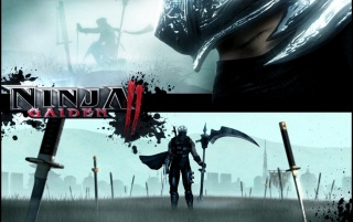 Ninja Gaiden 2 wallpapers and stock photos