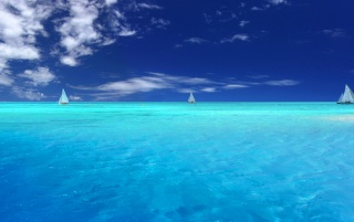 Blue Paradise wallpapers and stock photos