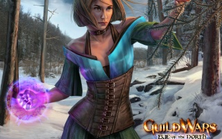 Guild Wars: Eye of the North wallpapers and stock photos