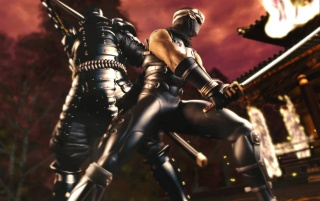 Ninja Gaiden wallpapers and stock photos