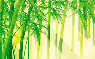Bamboo scene wallpapers and stock photos