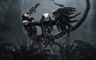 Aliens vs Predator wallpapers and stock photos