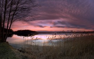 Am leuchtenen See wallpapers and stock photos