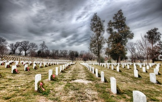 Endless rows of Arlington Cemetery wallpapers and stock photos