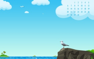 Seagull wallpapers and stock photos