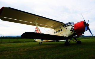 Aeroplane AN-2 wallpapers and stock photos