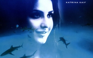 Katrina Kaif En azul wallpapers and stock photos