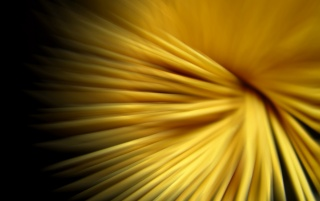 Yellow strings wallpapers and stock photos