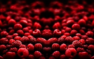Blood Fruit wallpapers and stock photos