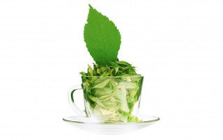 Cooling Mint wallpapers and stock photos