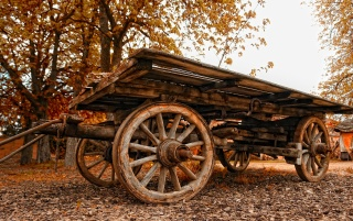 Wood Cart wallpapers and stock photos
