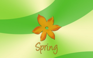 Spring orange flower wallpapers and stock photos