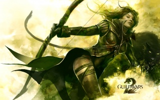 Guild Wars 2 wallpapers and stock photos