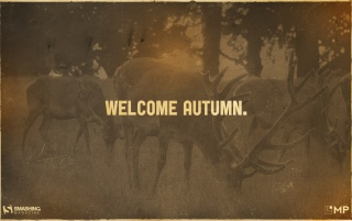 Welcome autumn! wallpapers and stock photos