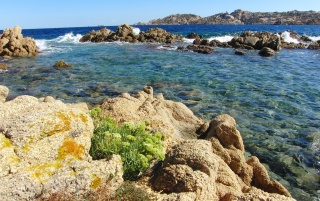La Maddalena island wallpapers and stock photos