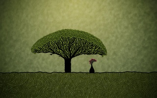 Millennial Tree wallpapers and stock photos