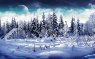 Winter wonderland 2 wallpapers and stock photos